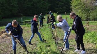 Louisenlund macht mit bei der Landwirtschaft der Zukunft