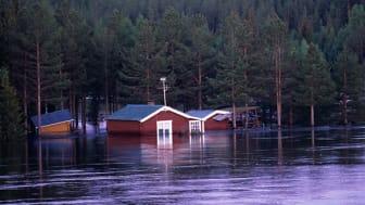 Gott försäkringsskydd mot översvämning idag men klimatanpassningen måste bli bättre