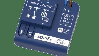 Somfy Izymo On/Off Lighting Receiver io
