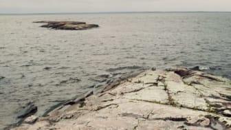 Dialogmöte i Tylösand: Hur ska olika intressen kunna samsas i Västerhavet?