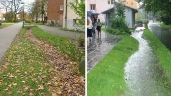 svackdike_torrt_regn