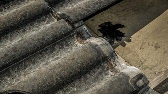 Essve RoofSeal 1