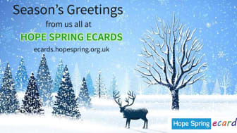 Business charity Christmas eCard launched