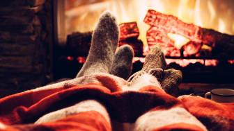 Im Winter vor dem Kamin liegen und die Wärme genießen - das wünschen sich viele!