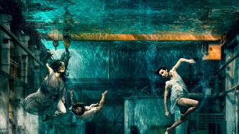 Foto: Mats Bäcker.  Bildbearbetning: Muhammad Ali