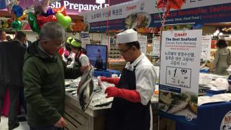 Nedgang i eksporten av pelagisk fisk i første kvartal