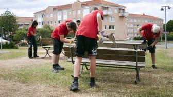 Sommarjobbare hos Stena Fastigheter slipar bänkar i Tynnered, Göteborg.