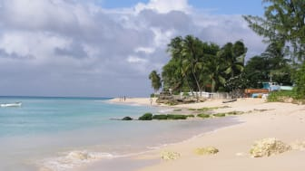 Enjoy a 'Canaries New Year & the Caribbean' Winter sun getaway with Fred. Olsen Cruise Lines in December 2014