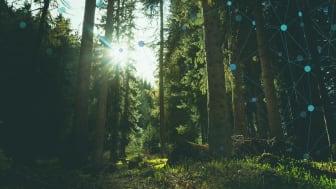 Glesys sätter ny standard för grön IT-drift