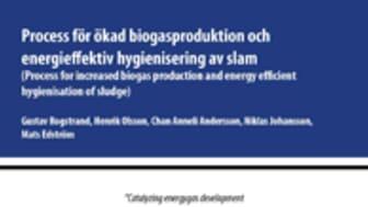 SVU-rapport C SGC 269: Process för ökad biogasproduktion och energieffektiv hygienisering av slam