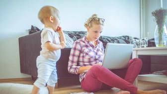 Le budget prime sur la durabilité - Une étude examine les achats de seconde main des jeunes familles sur Internet