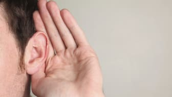 Världsledande hörselforskare samlas i Linköping