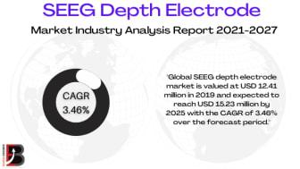 SEEG Depth Electrode Market