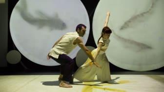 Panda's Home spelas som Fika Titta Dansa-föreställning på Skånes Dansteater söndag 5 februari.