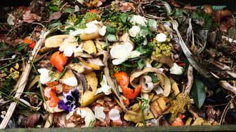 Bioabfall in Biotonne_GettyImages-547150468_bearb_RZic