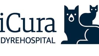 Skal din hund steriliseres? I får tryg behandling på vores dyrehospital i Nyborg