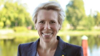 Ann Otto Nemes, Utvecklingsdirektör