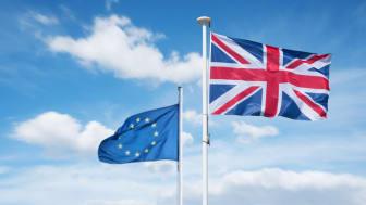 Brexit: Großbritannien verlässt die EU am 31. Januar 2020 und startet Übergangsphase