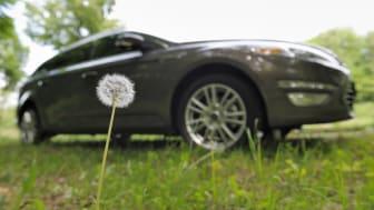 Dra nytta av ogräset: Ford undersöker möjligheten att tillverka komponenter av maskrosor
