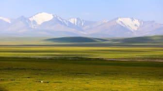 Ängstepp i Qilian-bergen