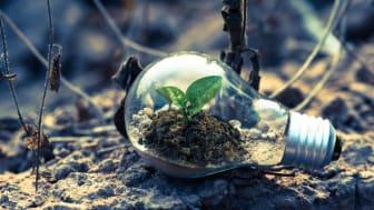 Forskningskonferensen DevRes2021 syftar till att vara en kreativ mötesplats för aktörer inom utvecklingsforskning i låginkomstländer och lägre medelinkomstländer. Foto: Pexels.com