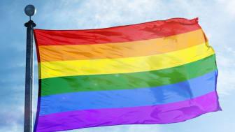ISS är en stolt arbetsgivare där jämlikhet och mångfald är en självklarhet.