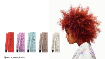 IGORA ROYAL: nu med ny look men samma pålitliga formula inuti