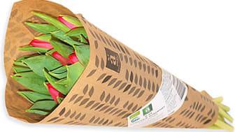 Nu finns det KRAV-märkta tulpaner