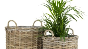 SANSEBIE garden planters 999 NOK