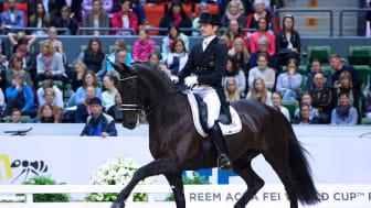 Gothenburg Horse Show - Gal och Minderhoud till Göteborg