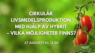Workshop med fokus på möjligheterna till cirkulär livsmedelsproduktion med hjälp av spillvärme från Hybrit