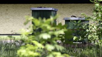 Fem bikupor står på plats utanför Swedeses huvudkontor och fabrik i Vaggeryd