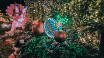 Pose with life-sized dinosaurs decked in festive lights, striking neon signs and a dazzling 25m-long light tunnel.