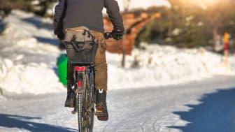 Den 12 februari är det dags för vintercyklingens dag.