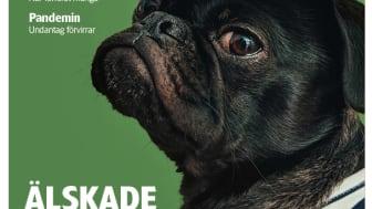 I första numret för året läser vi bland annat om begravningsplatser för husdjur