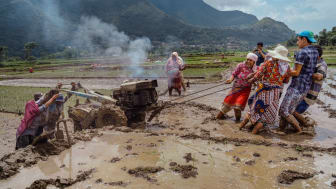 2694_1346570_0_© Pranishan Rajbhandari , National Awards, 2nd Place, Nepal, 2019 Sony World Photography Awards