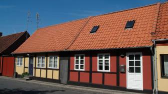 Dantegl_Danmarks_Nationaltag_03