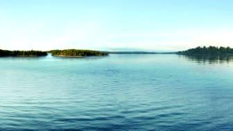 Natur & Meer: Mit Scandlines zum größten Wanderfestival Europas nach Südschweden