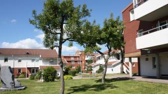 Kolningsberget är ett av Stenungsundshems bostadsområden
