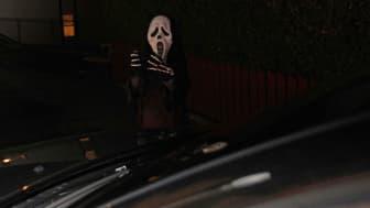 Husk refleks: skumle vesner i høstmørket er knapt synlig for bilister.