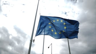 Research shows that there are winners and losers from the recent crisis, and this may have a profound economic, social and political impact on Europe