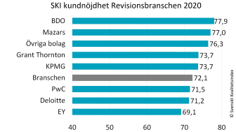 Revisionsbranschen 2020.jpg