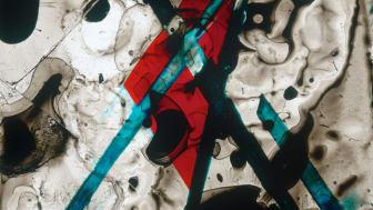 Edgar Cleijne och Ellen Gallagher, Better Dimension, 2010, Bläck och tejp på diabild, detalj.