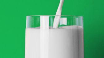 Framtidens mjölk föds på innovationsevent