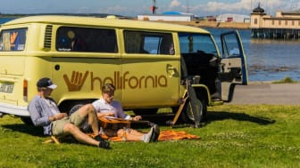 Hallifornia-Summer Arising