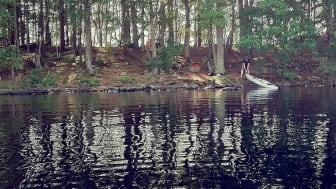 Hola Lake Immeln tilldelas kronhjortspriset