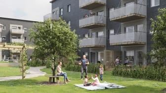 Illustration av trädgårdssida md balkonger, altaner och gemensamma grönytor i BoKlok Aroma, Drottninghög, Helsingborg.