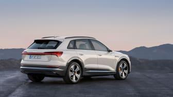 Audi e-tron (Siam beige) rear, statisk