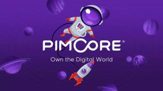6 Schritte zur passenden Pimcore-Agentur