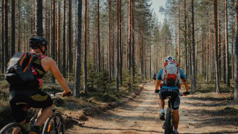 Cykling i Umeåregionen. Foto: Emelie Persson